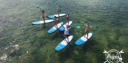 Paddle & surf