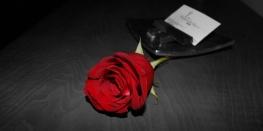 RosaRomantica