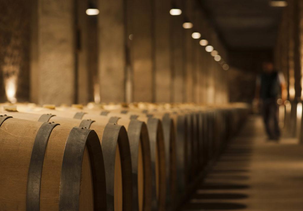 Visita bodega vino